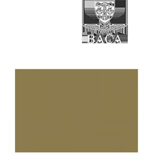Voluxis logo